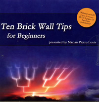 Ten Brick Wall Tips for Beginners